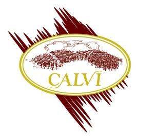 CALVI-DAVIDE-LOGO